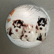 Crystal Paperweight, Husky Puppies